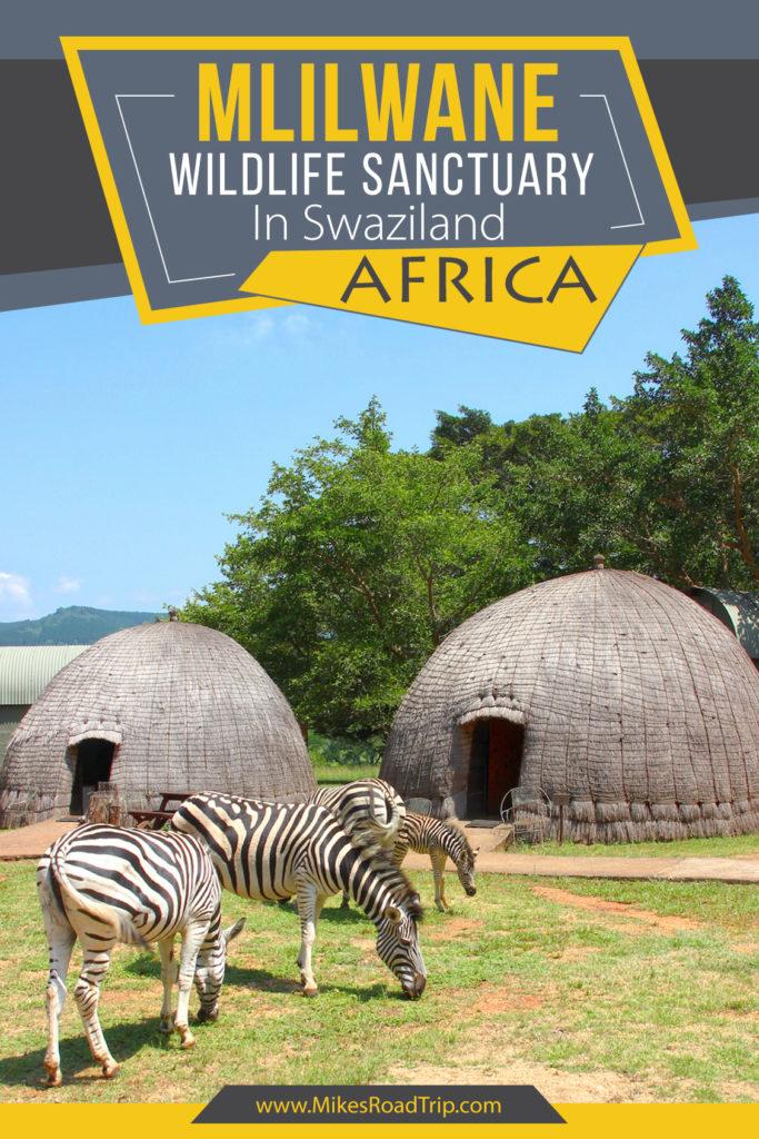 Mlilwane Wildlife Sanctuary in Swaziland Africa - Pinterest Pin by MikesRoadTrip.com