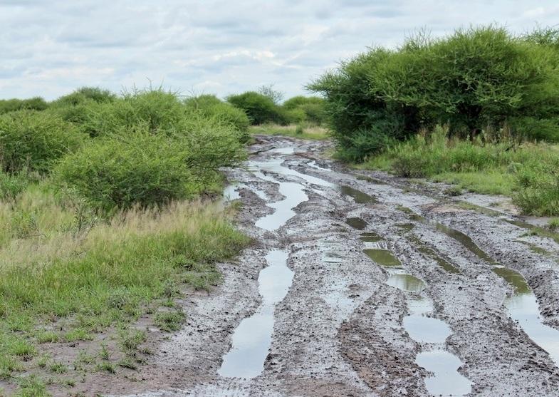 Muddy road in Kalahari
