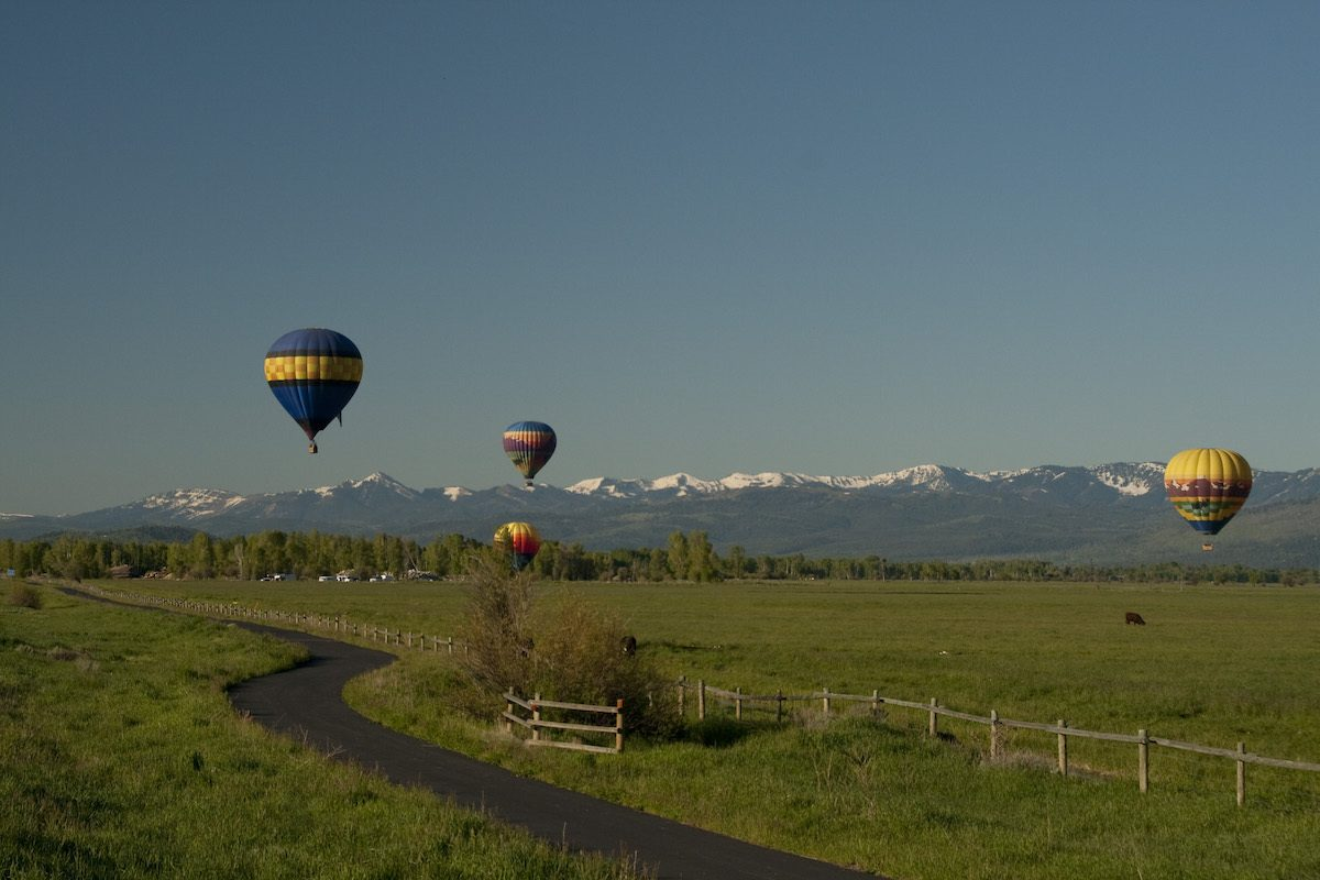 Hot air Balloons in Jackson Wyoming by Mike Shubic