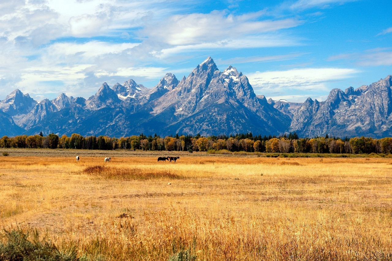 grand-tetons-in-the-fall
