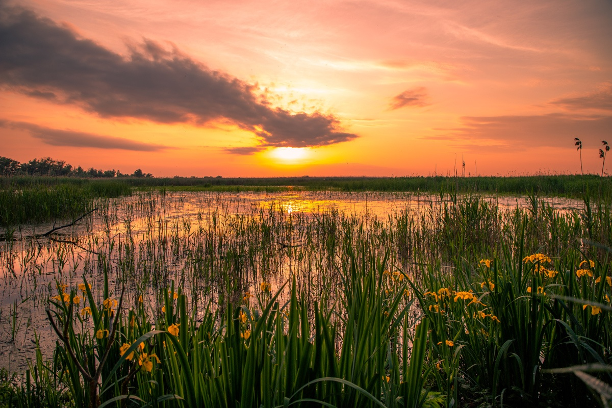 Sunset in the Danube Delta - Photo by: Mihaela Popa of WorldTravelBug.com