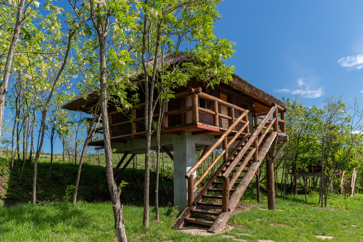 Treehouse at Ferma Dacilor in Romania