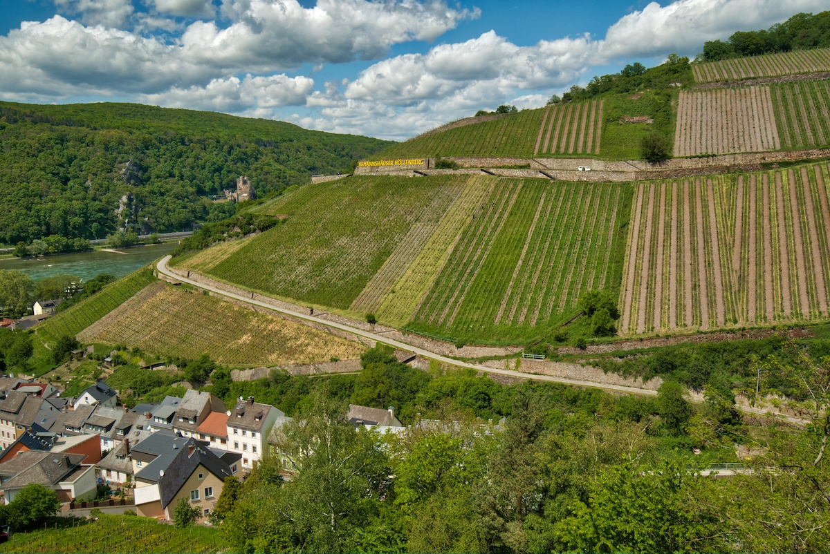 Rudesheim vineyards along Rhine in one of the many incredible places to visit in Germany - Photo by: MikesRoadTrip.com