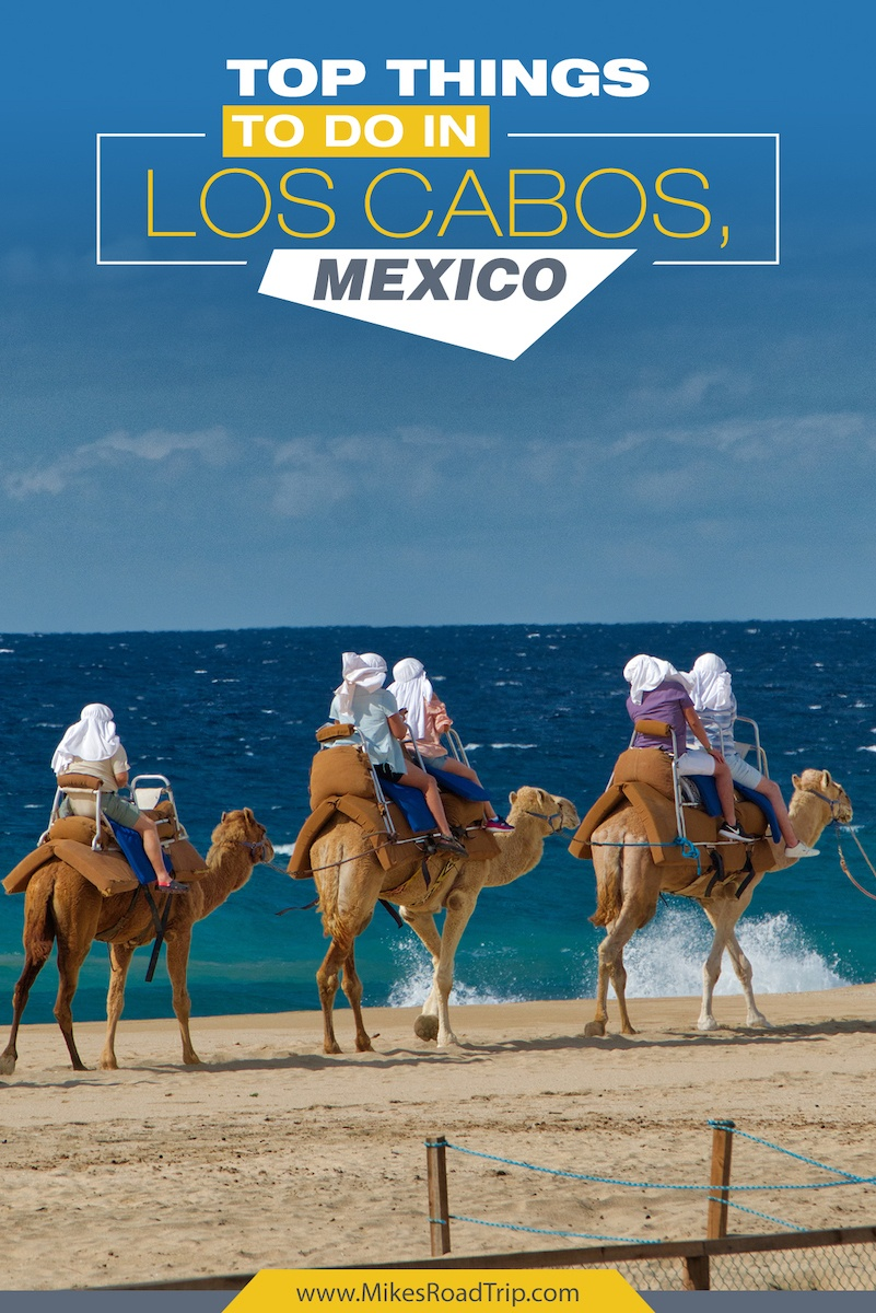 Top things to do in Los Cabos, Mexico