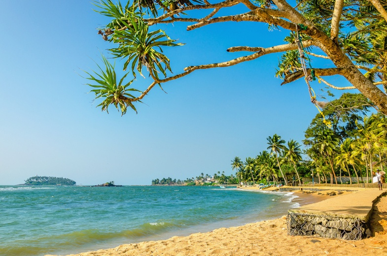 Beautiful wild and exotic Caribbean beach