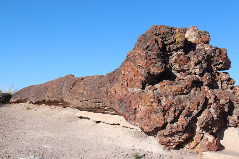 Petrified Forest is one of the top places to visit in Arizona - Photo by Mike Shubic of MikesRoadTrip.com