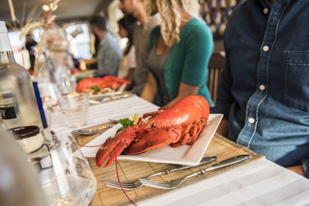 Lobster in Nova Scotia
